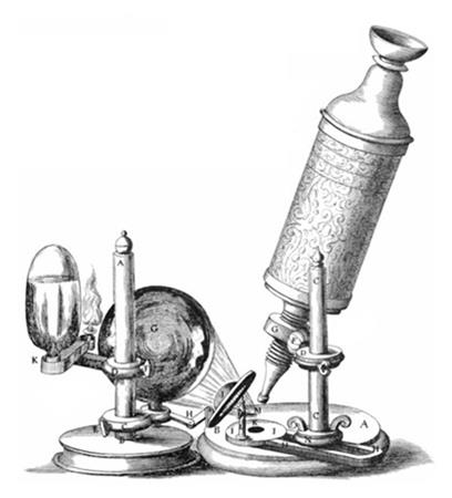 mikroskopia swietlna rys 1