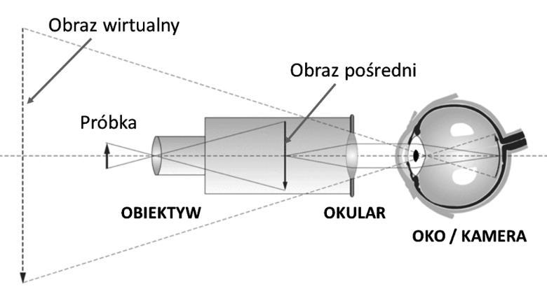 mikroskopia swietlna rys 2