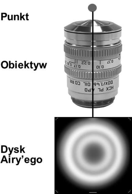 mikroskopia swietlna rys 4